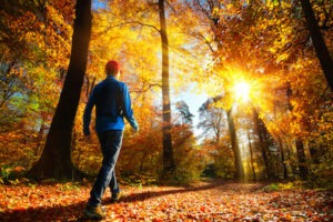 Taking care of mental health during fall